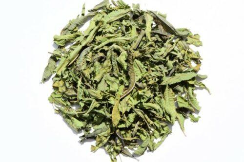 botana-herb-Stevia